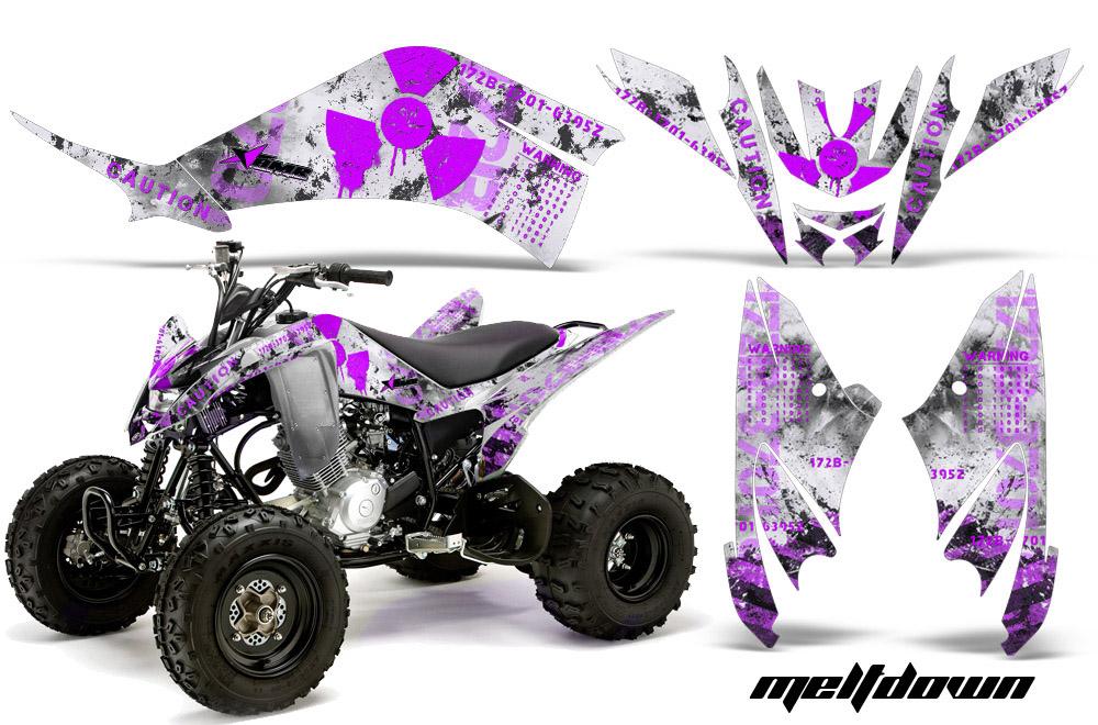 Yamaha Raptor Sticker Set