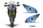 Head Light Eye Graphics for 2009-2015 Yamaha FJ, Many Designs to Choose from!